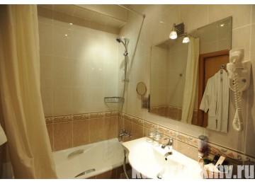 Санаторий «Дубовая роща» Железноводск Стандарт 1-местный 1-комнатный